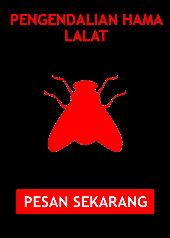 jasa pembasmi lalat di semarang